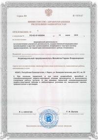 Лицензия (приложение)