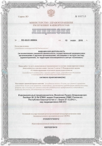 Лицензия (1 страница)